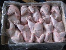 Цыпленок Корнишон Россия от 3 кг