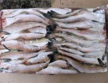 Минтай морской без головы тушка 30 см Мурманск от 13 кг
